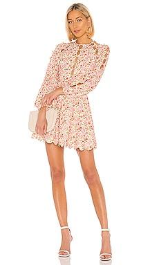 Goldie Scallop Dress Zimmermann $750