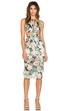 Zimmermann Arcadia Floral Rivet Dress in Floral