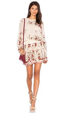 Zimmermann Sakura Embroidered Dress in Nude Floral