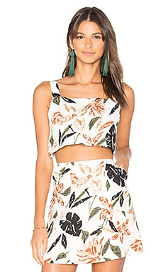 Natives Crop Camisole in Print