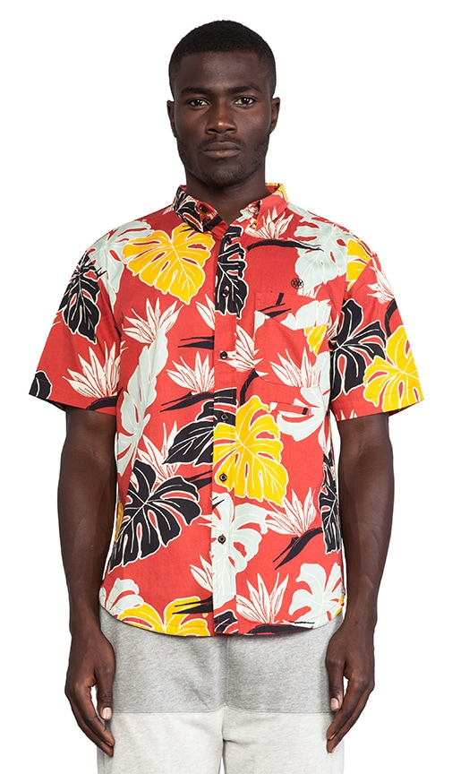 Birds of Paradise S/S Button Down