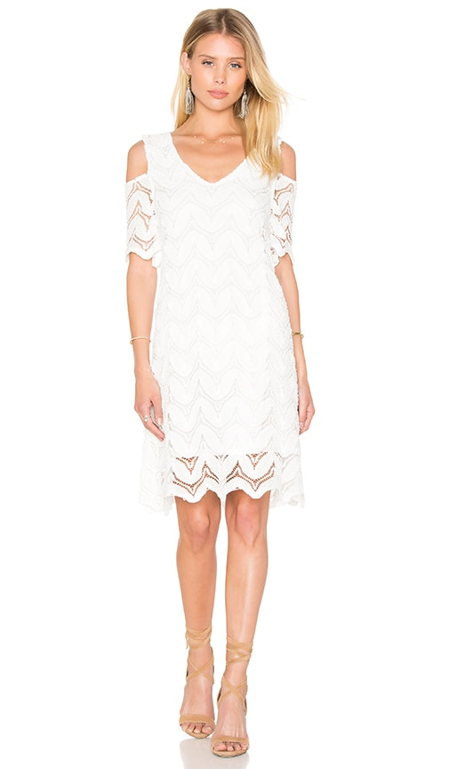1. STATE Cold Shoulder Lace Dress in Cloud