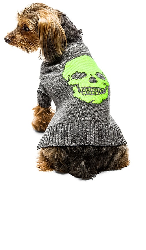 360 Sweater Skull Dog Sweater in Heather Grey & Electric Lime