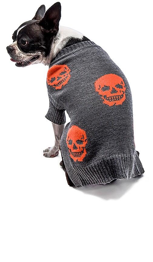 360 Sweater Skull Dog Mini Luthor in Heather Grey & Electric Orange