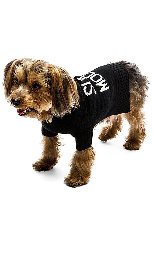 360 Sweater Skull Dog Super Model Sweater in Black