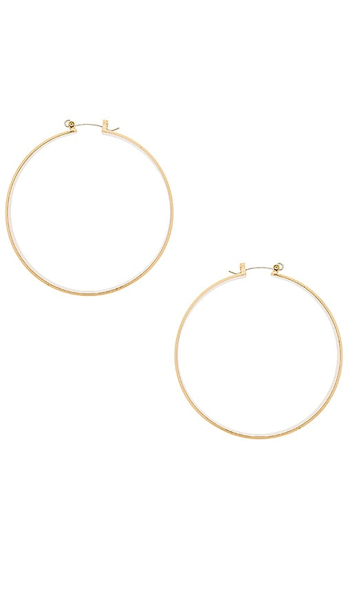 Robin Hoop Earrings