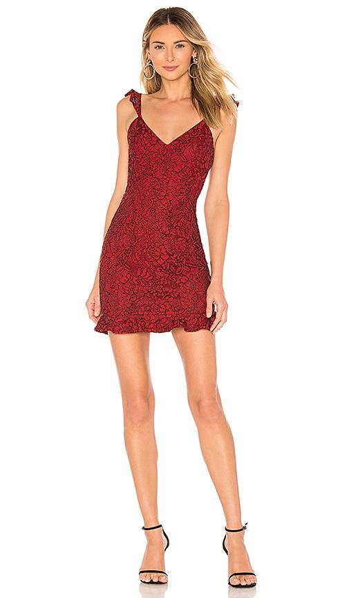 Willoh Lace Ruffle Dress
