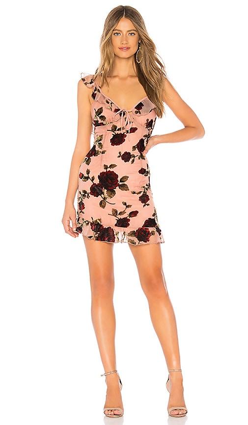 Adonia Mini Dress