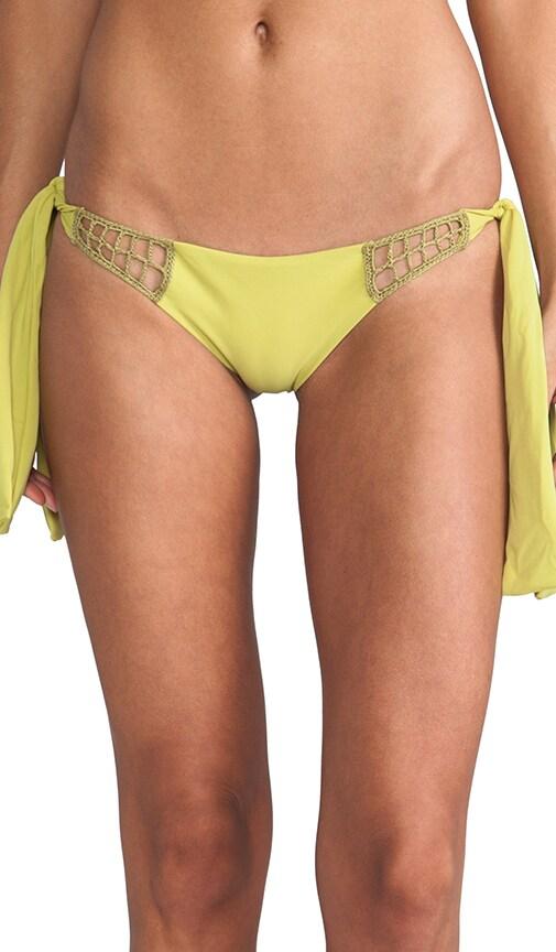 Anini Bikini Bottom