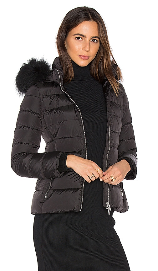 ADD Down Jacket with Asiatic Raccoon Fur Collar in Black