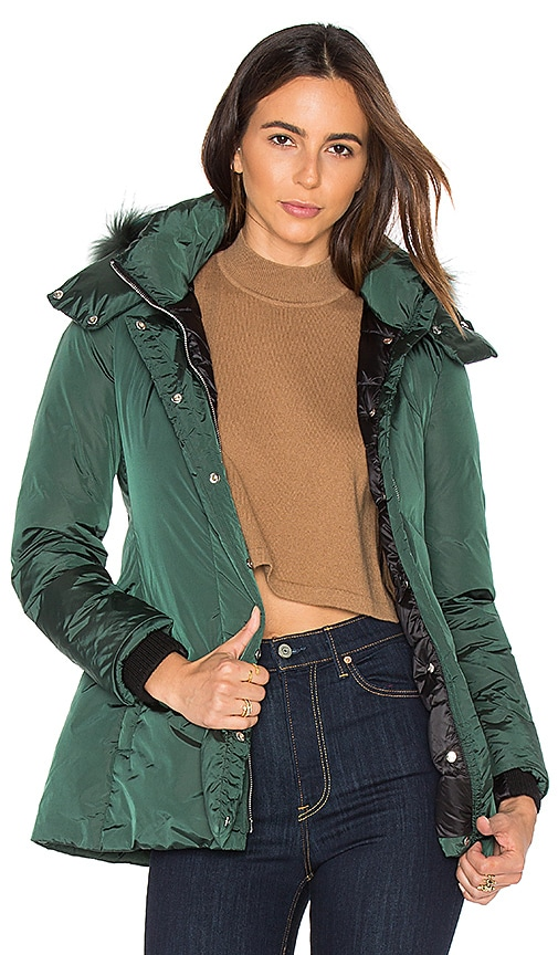 ADD Down Jacket with Asiatic Raccoon Fur in Dark Green