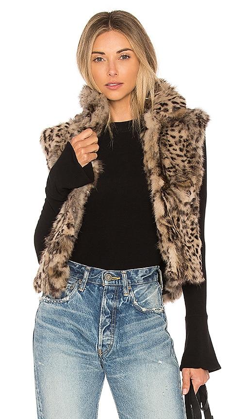 Adrienne Landau Printed Rabbit Vest in Brown