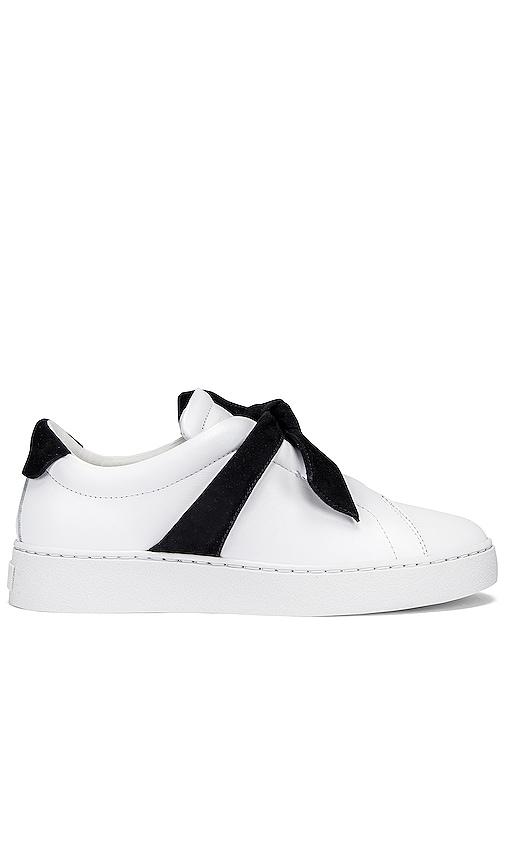 Alexandre Birman Clarita Sneaker in
