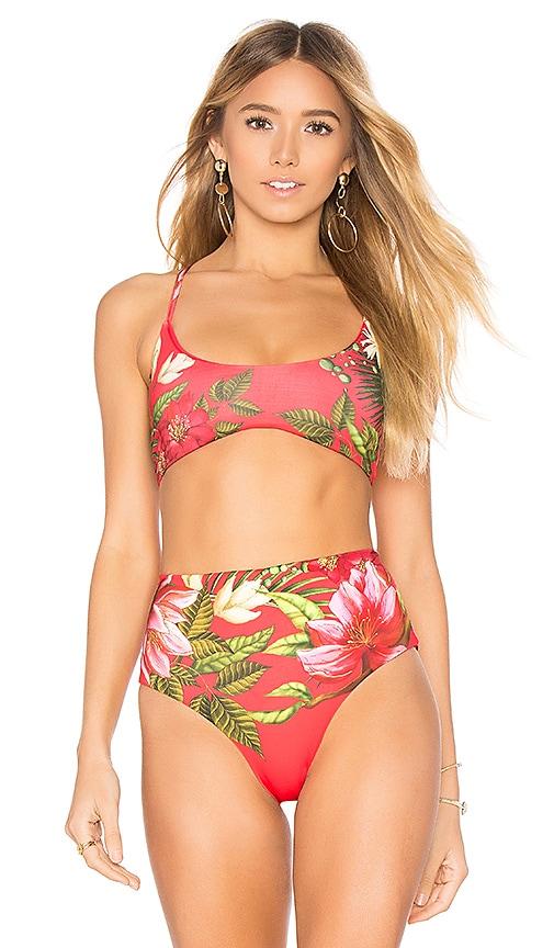 Agua Bendita Lilou Reversible Bikini Top in Red