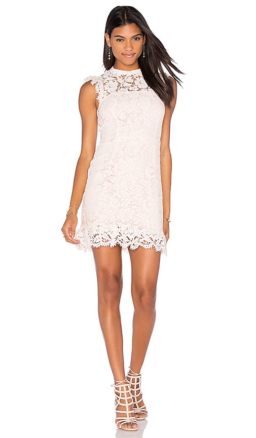 aijek Into The Night Lace Mini Dress in Pink