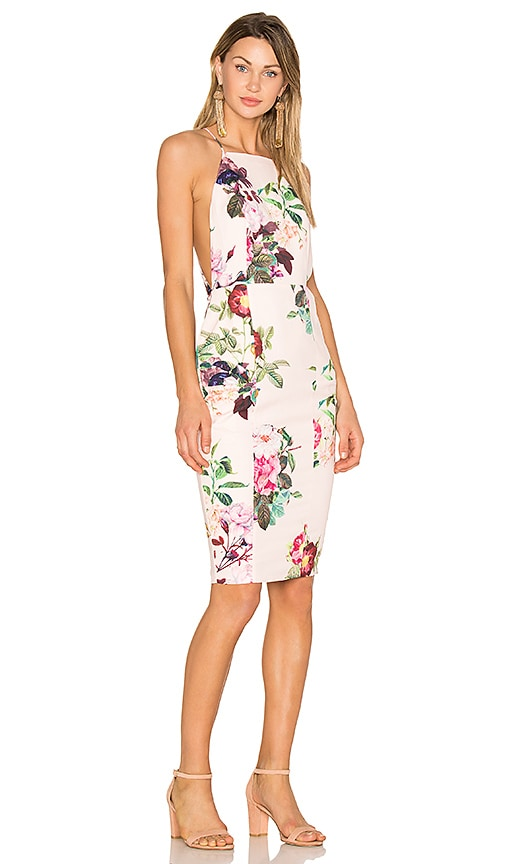 AIRLIE Isolla Bella Midi Dress in Pink