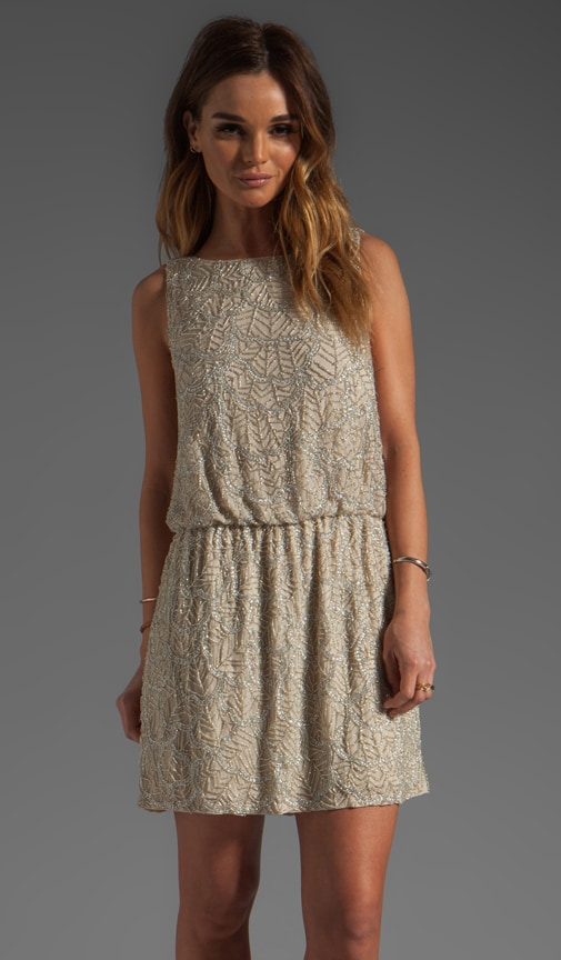 Nora Dropped Waist Beaded Dress