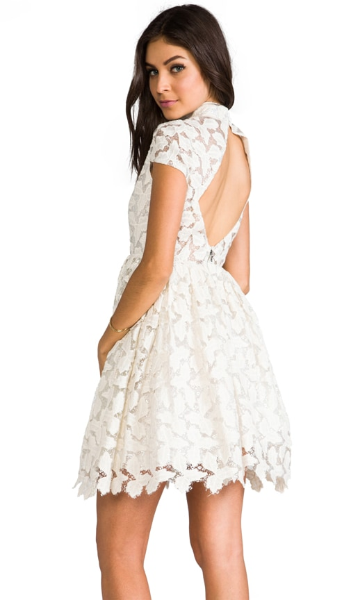 Jayna Lace Open Back Flare Dress