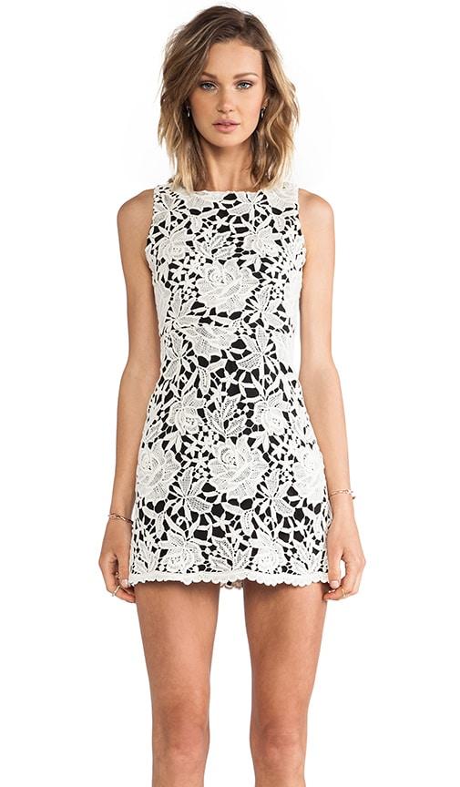 Jolie Sleeveless Mesh Back Dress
