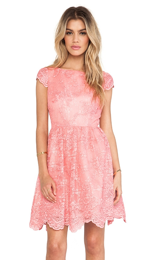 Alice Olivia Zenden Scallop Edge A Line Dress In Pink