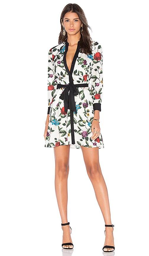 Brooklynn Mini Dress