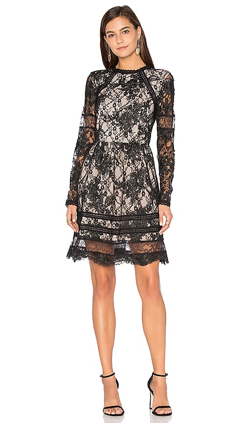 Alice + Olivia Janae Lace Mini Dress in Black