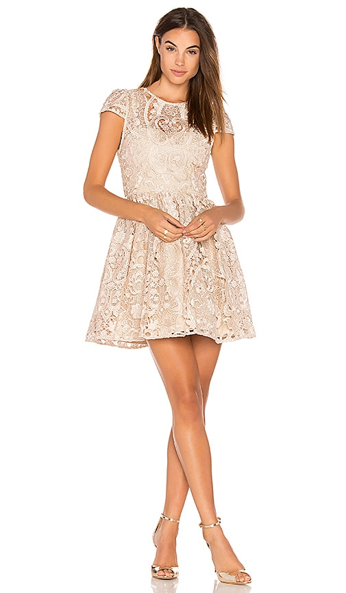 Alice + Olivia Gracia Dress in Beige