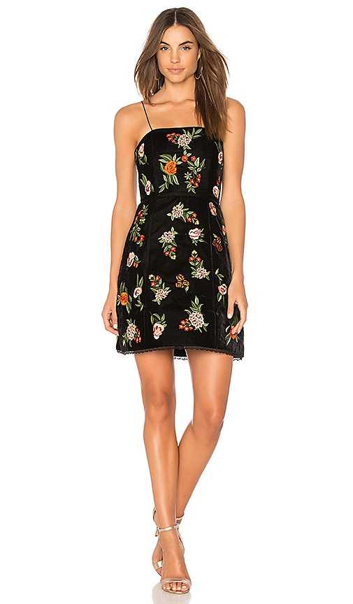 Alice + Olivia Launa Embroidered Dress in Black