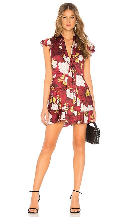 Lashay Dress