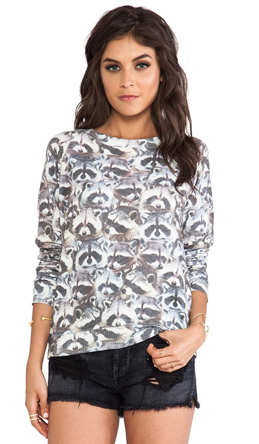 Raccoon Cozy Sweatshirt