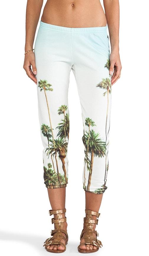 LA Palm Tress Sweats