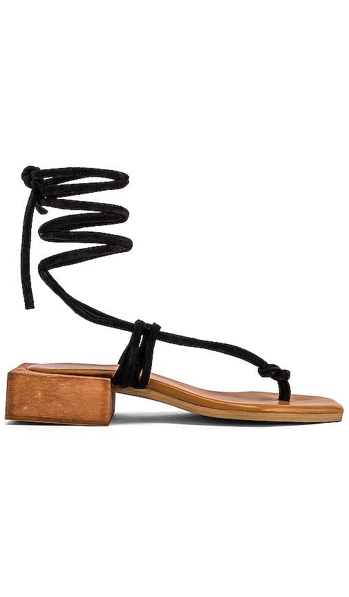 Palm Sandal