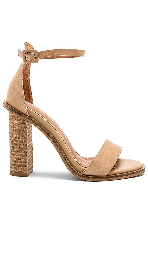 Addax Heel