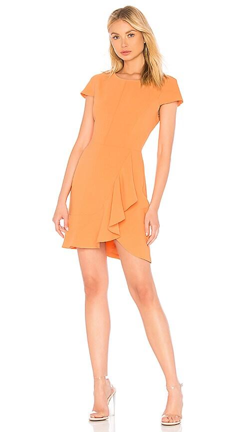 Amanda Uprichard Whistler Dress in Orange
