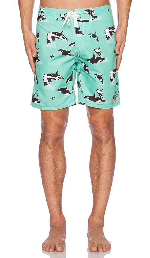 Whilly Boardshort