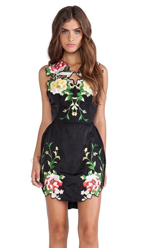 Black Elder Dress