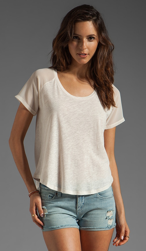 Cotton Wood Top