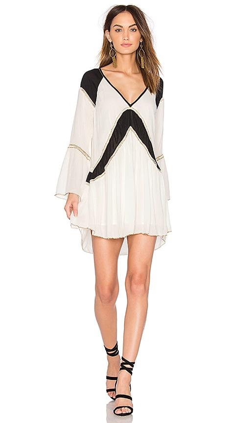 AMUSE SOCIETY Topaz Dress in Black & White