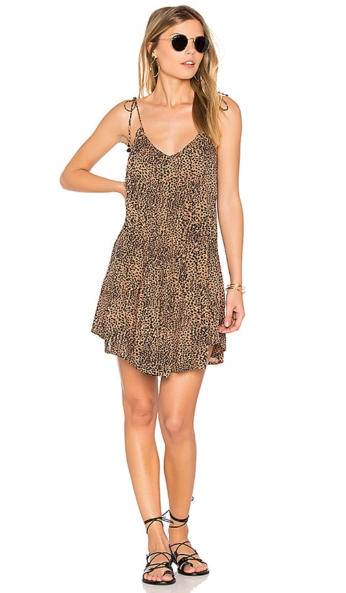 AMUSE SOCIETY Amya Dress in Brown