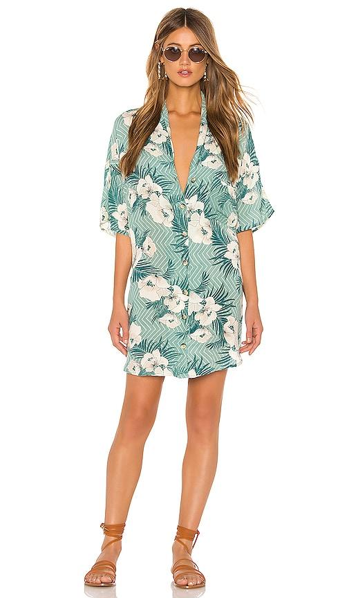 Island Oasis Button Up Dress