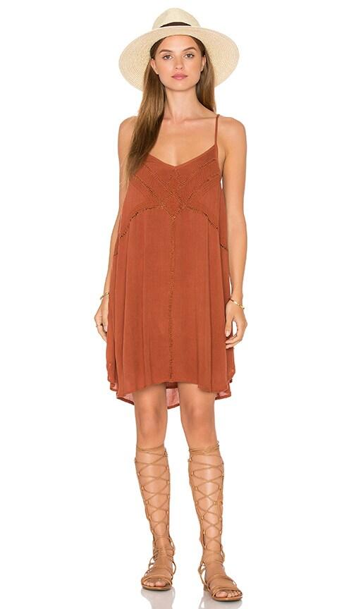 AMUSE SOCIETY Vienna Dress in Brown