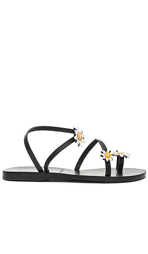 Ancient Greek Sandals X Fabrizio Viti Sheila Sandal xUHVNjfsO