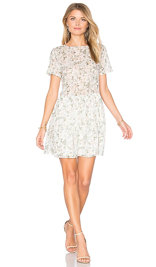 ANINE BING Floral Mini Dress in White