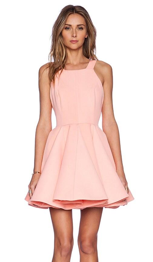 Heger Mini Dress