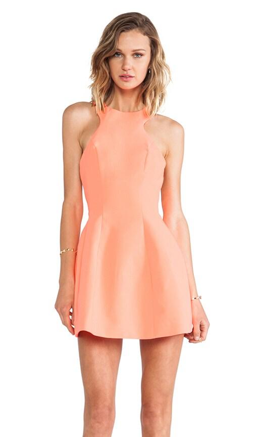 Kiki Mini Dress