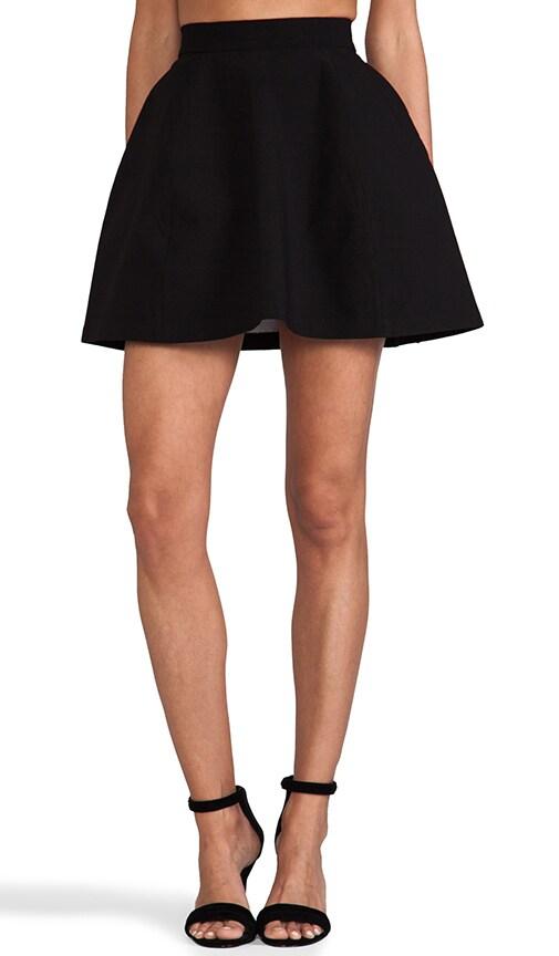 Shade Mini Skirt