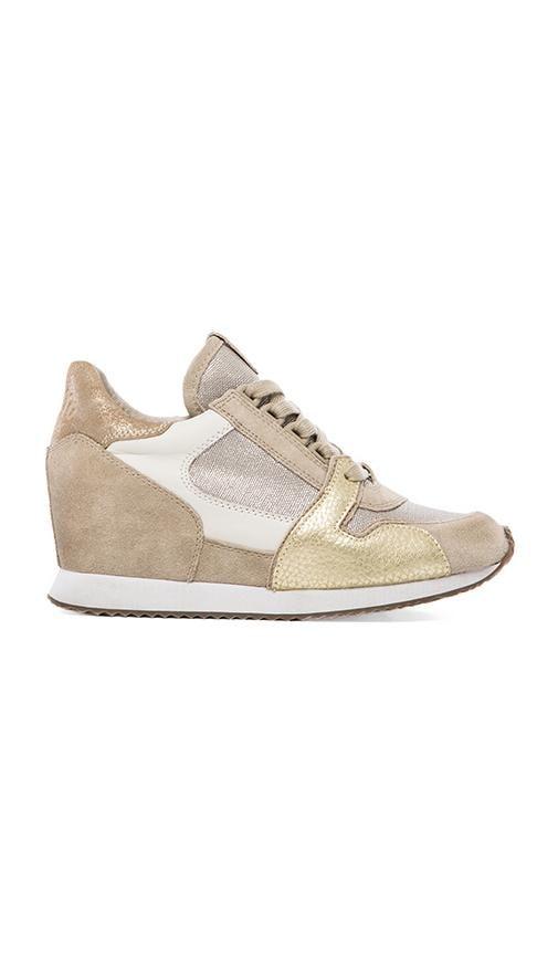 Dean Sneaker