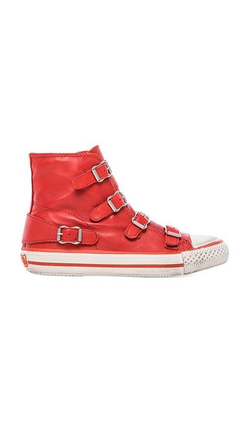Virgin Sneaker