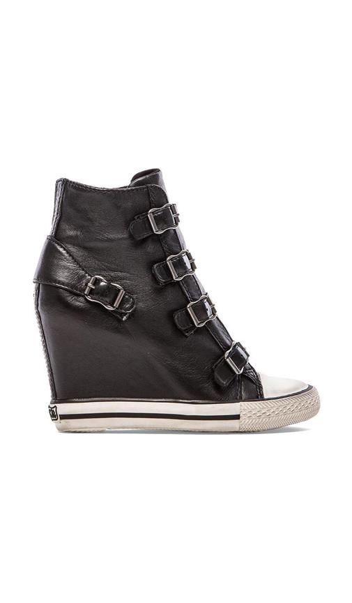 United Sneaker Wedge