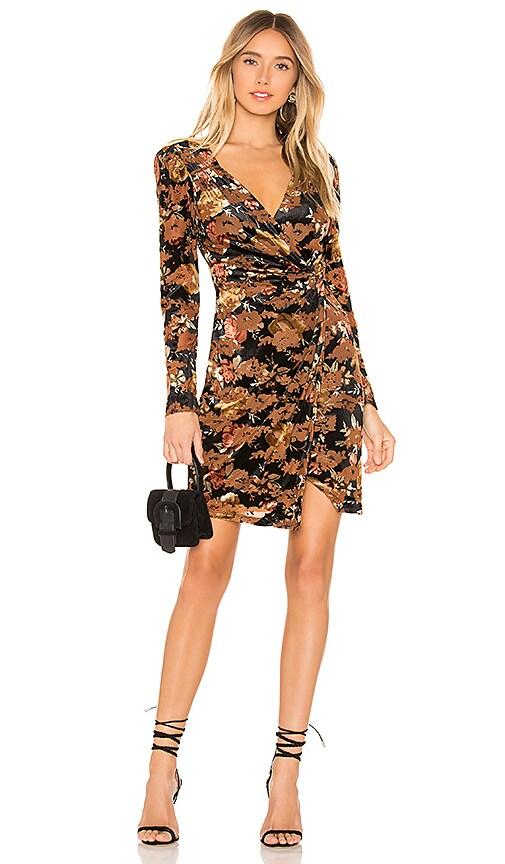 Lanita Velvet Dress